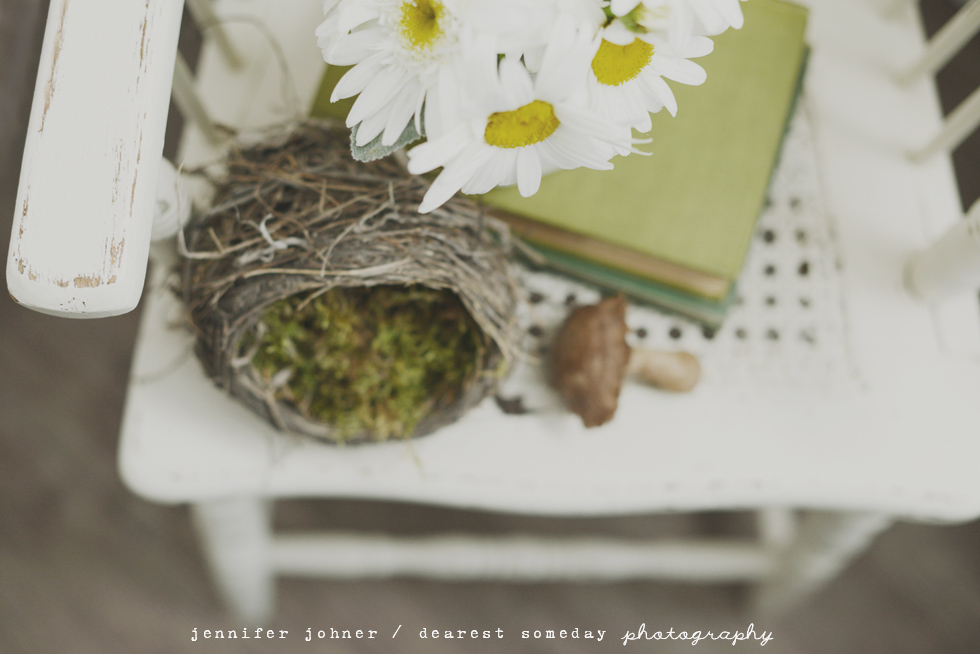 photography styled shoot
